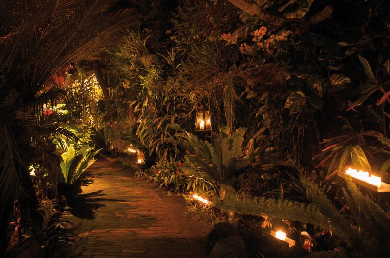 Afbeeldingsresultaat voor kaarsjesavond orchideeenhoeve