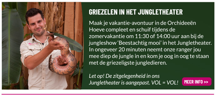 Jungleshow