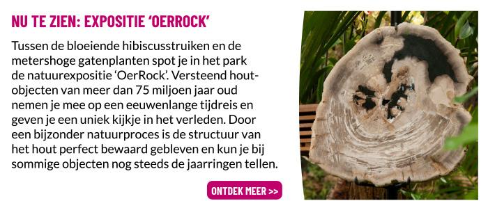 Expositie OerRock